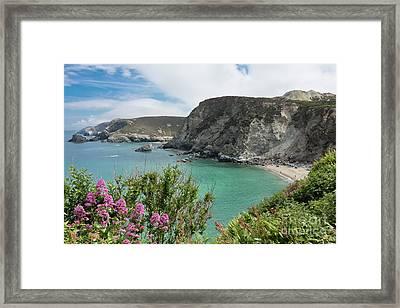 St Agnes Coast Framed Print by Terri Waters