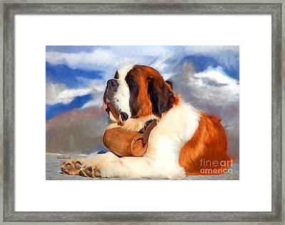 St. Bernard Dog Framed Print by Garland Johnson