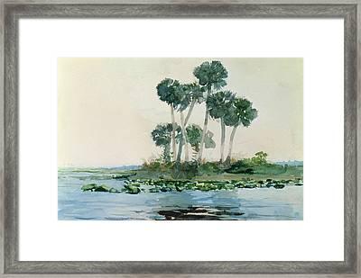St John's River Florida Framed Print by Winslow Homer