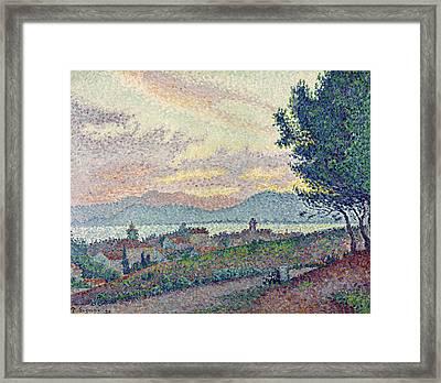 St Tropez Pinewood Framed Print by Paul Signac