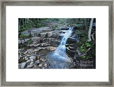 Stair Falls  Framed Print by Catherine Reusch  Daley