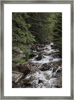 Staircase Creek Framed Print by Carolyn Brown