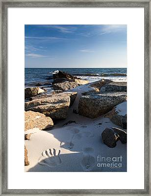 Stamped Framed Print by Michelle Wiarda