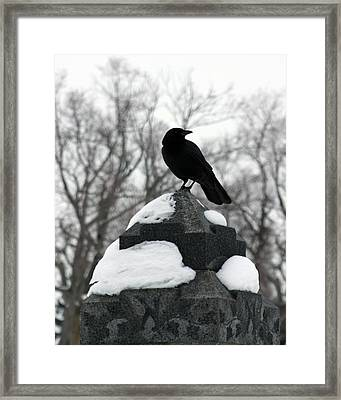 Stance Framed Print by Gothicolors Donna Snyder
