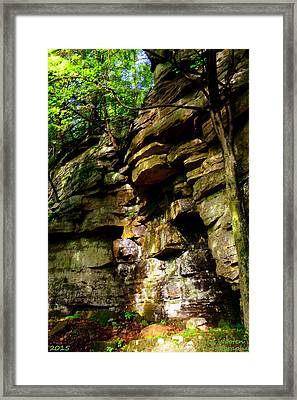 Stand In Amazement Framed Print by Lisa Wooten