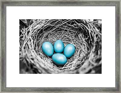 Stand Out  Framed Print by Parker Cunningham