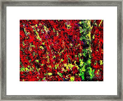 Standing Out Framed Print by Tim Townsend