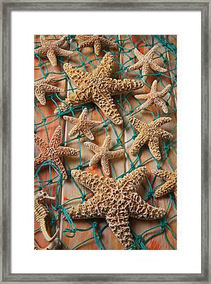Starfish In Net Framed Print by Garry Gay