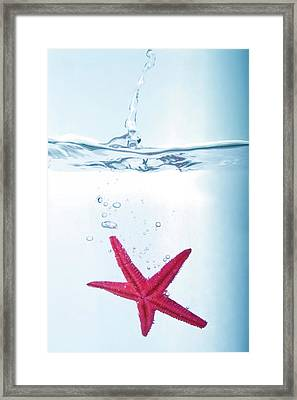 Starfish In Water Framed Print by Fotografias de Rodolfo Velasco