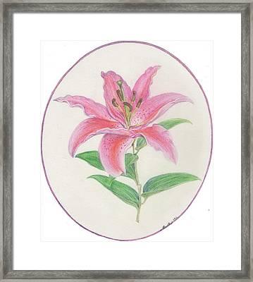 Stargazer Lily Framed Print by Joanna Aud