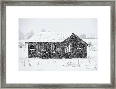 Stark Reality Framed Print by Mike Dawson