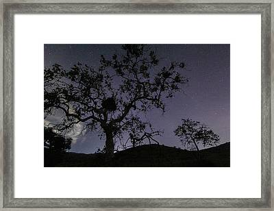 Starry Night Framed Print by Mary Ourada