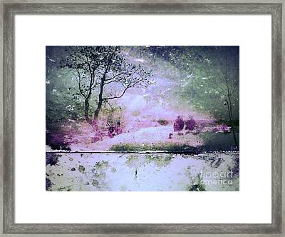 Starry Nights Framed Print by Tara Turner