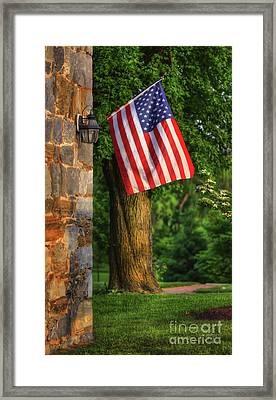 Stars And Stripes Framed Print by Lois Bryan