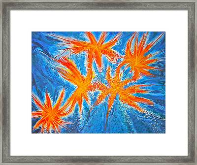 Stars Framed Print by Marie Halter