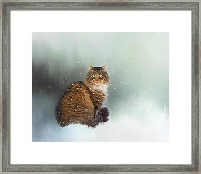 Starting To Snow Again Framed Print by Theresa Tahara