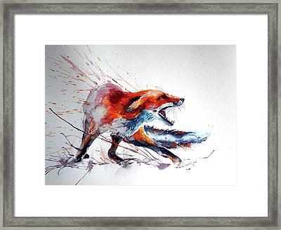 Startled Red Fox Framed Print by Kovacs Anna Brigitta