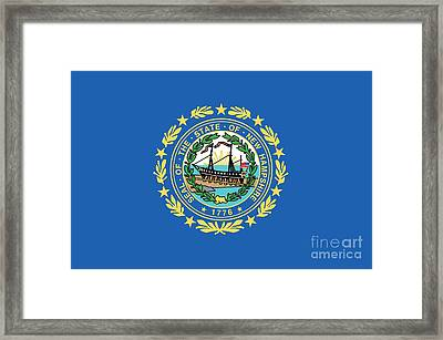 State Flag Of New Hampshire Framed Print by American School