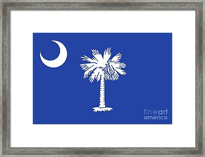 State Flag Of South Carolina Framed Print by American School