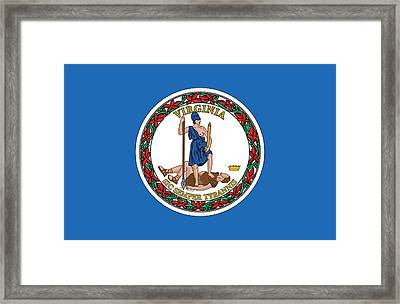 State Flag Of Virginia Framed Print by American School