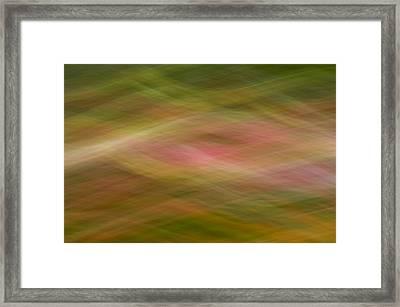 Static Framed Print by Peter Olsen