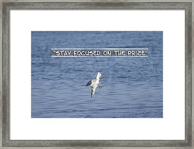 Stay Focused On The Prize Framed Print by Thomas Young
