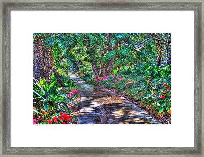Stay On Your Path Framed Print by TC Morgan