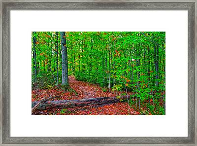 Stay The Course Framed Print by John M Bailey