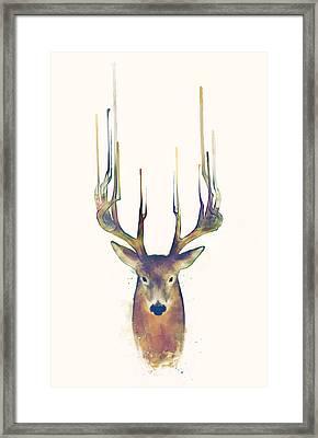 Steadfast Framed Print by Amy Hamilton