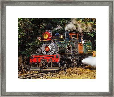Steam Train Dixiana Framed Print by Garry Gay
