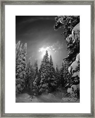 Steamboat Springs Back Country Framed Print by Virginia Furness