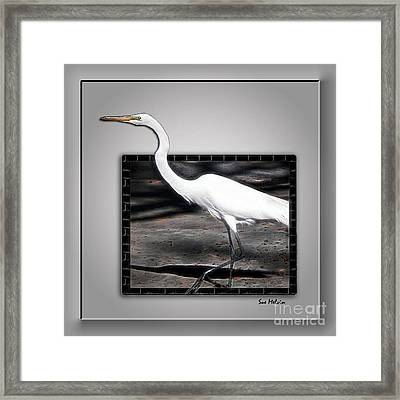 Stepping Out Into A New Dimension Framed Print by Sue Melvin