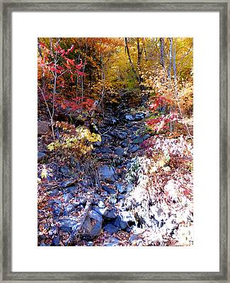 Stepping Stones At Autumn Forest Framed Print by Lanjee Chee