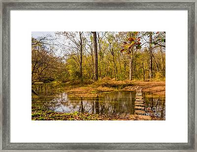 Stepping Stones At Rock Spring - Natchez Trace Framed Print by Debra Martz