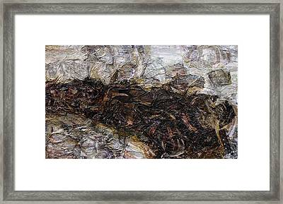 Stick In The Mud Framed Print by Scott Rolfe