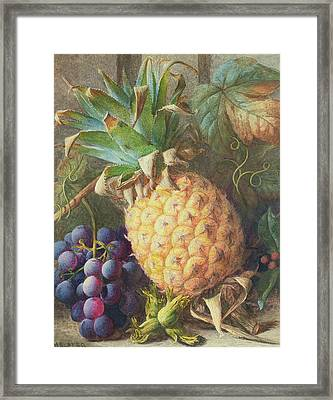 Still Life Of A Pineapple And Grapes  Framed Print by Charles H Slater