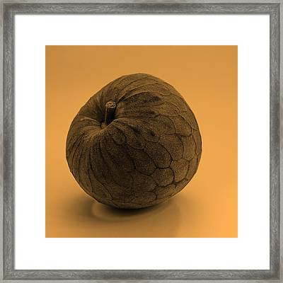Still Life With Cherimoya Framed Print by Viktor Savchenko