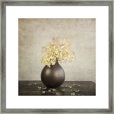 Still Life With Hydrangea Framed Print by Theresa Tahara