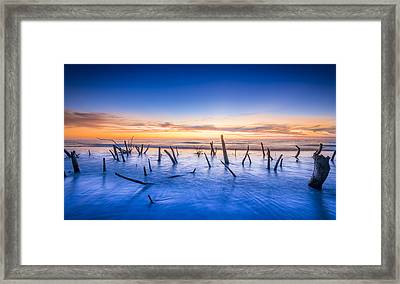 Still Standing Framed Print by Marvin Spates