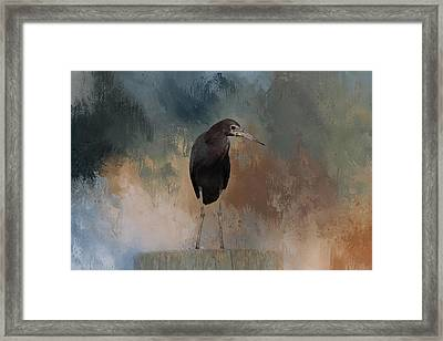 Stilt Legs Framed Print by Kim Hojnacki