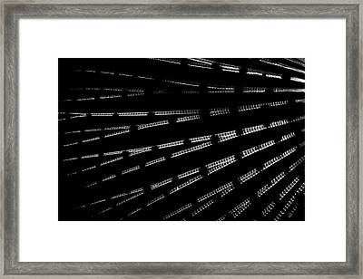 Stings Framed Print by Rico Besserdich