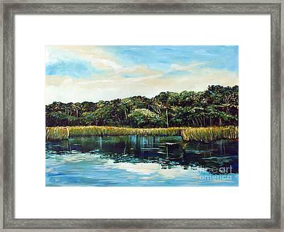 St.johns River Framed Print by Linda Olsen