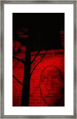 Stone Face Framed Print by Dale Woodfin