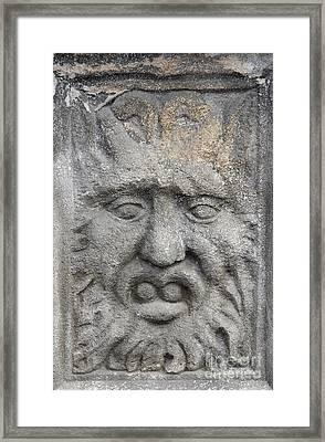 Stone Face Framed Print by Michal Boubin