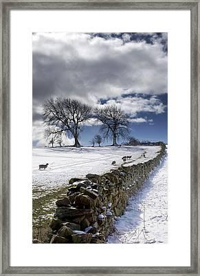 Stone Fence, Weardale, County Durham Framed Print by John Short