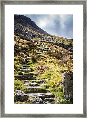 Stone Steps Framed Print by Amanda And Christopher Elwell