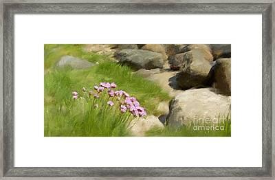 Stony Beach Impression Framed Print by Lutz Baar