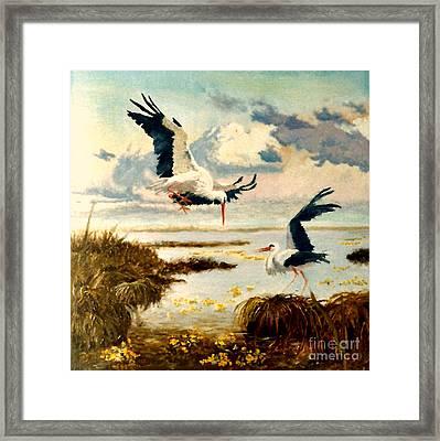 Storks II Framed Print by Henryk Gorecki