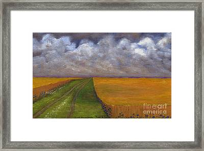 Storm Is Coming Framed Print by Anna Folkartanna Maciejewska-Dyba