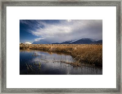 Storm Reflections Framed Print by Cat Connor